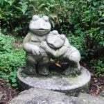 舞岳源水 出むカエル