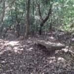 眉山(七面山)最初のベンチ