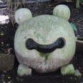 舞岳湧水 カエル