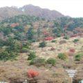 仁田峠 ロープウェイ上り展望所