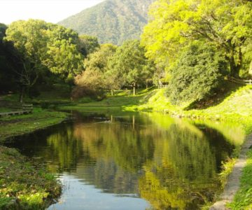 島原市 ひょうたん池