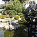 武家屋敷売店 池と水車