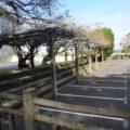 霊丘公園 有馬武道館