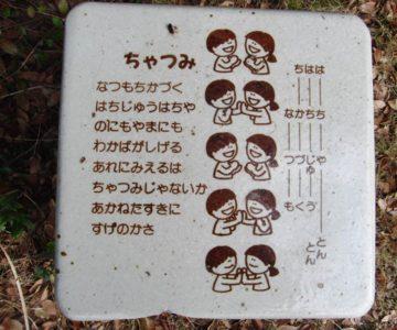 島原海浜公園 ちゃつみ