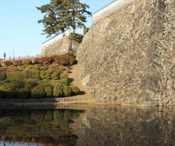 お堀からの島原城