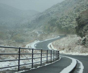 焼山への道のり