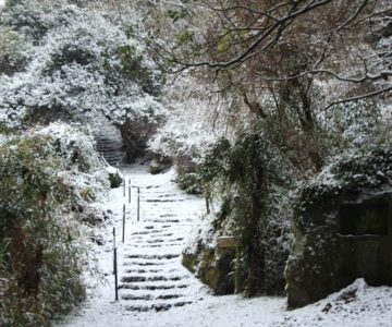 焼山園地 遊歩道登り口