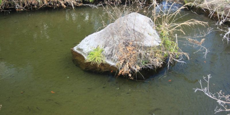 防火用貯水池