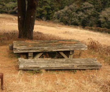礫石原公園