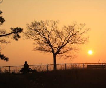 霊丘公園 朝焼け