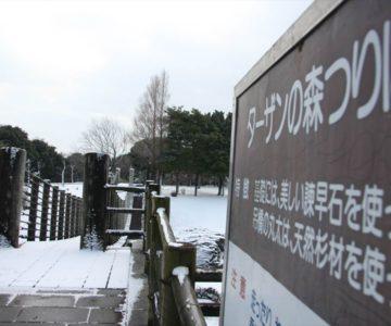 百花台公園 つり橋