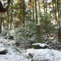 岩戸神社 皇太子殿下御成婚記念植樹