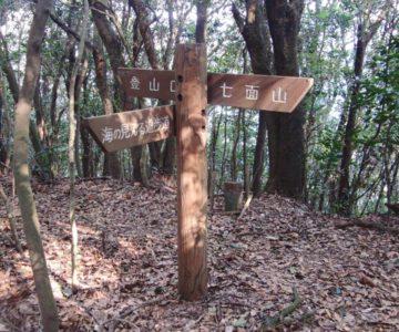 眉山登山 見晴らしのいい散策道