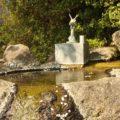 折橋神社 手水