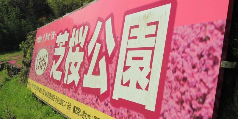しまばら火張山花公園 しまばら芝桜公園