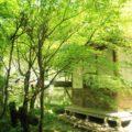 渓流公園 水車