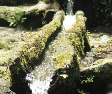 千本木湧水
