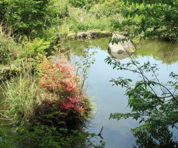 防火貯水池