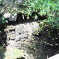 古丁水源地