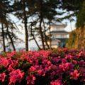 島原城 西望記念館 巽の櫓