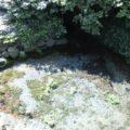 江里神社 湧水