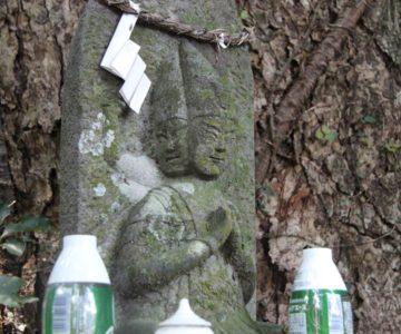 瓢箪畑稲荷神社 阿修羅像
