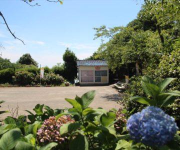 戸ノ隅公園