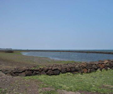 長浜海岸(スクイ)