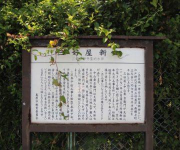 長浜海岸 三好屋新田