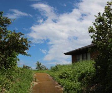 垂木台地森林公園