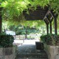 ひょうたん池公園 藤棚