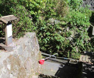 火張山花公園 権現様の水