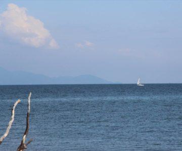 沖合の白いヨット