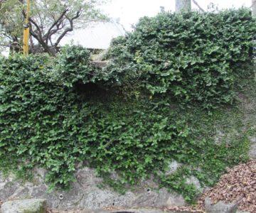 天満神社 清水川