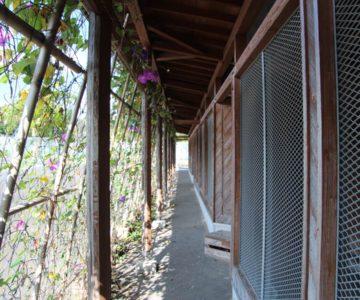 有明の森フラワー公園 動物小屋