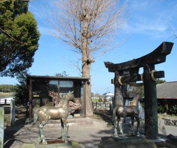 馬頭観音中原神社 馬の像
