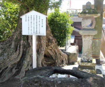 温泉神社 御手水の謂