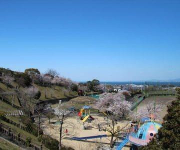 島原総合運動公園 桜 ロケット公園