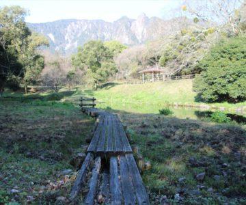 ひょうたん池公園 八ツ橋