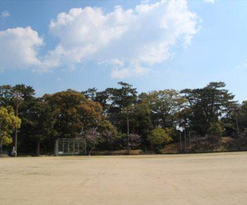 霊丘公園 グラウンド
