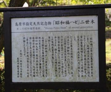 旧島原藩薬園跡 昭和福ハゼ