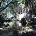 戸ノ隅の滝