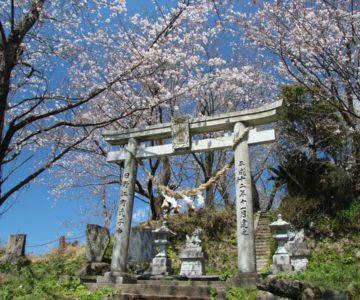 日野江神社 鳥居
