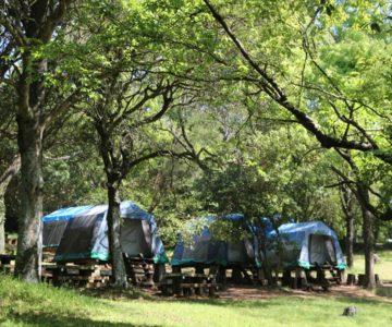 諏訪の池キャンプ場