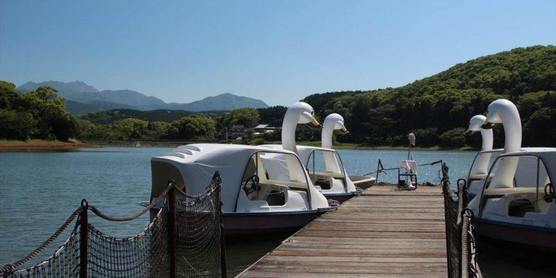 諏訪の池 スワンボート