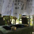 諏訪神社 手水舎