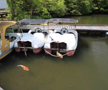 白雲の池 ボート