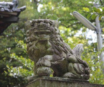 温泉神社 狛犬