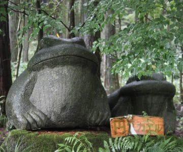 舞岳湧水 円満カエル