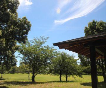 ひょうたん池公園 多目的芝生広場